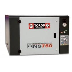 NS-300M